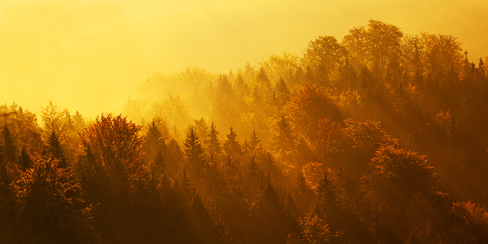 Autumn in Bohemian Switzerland