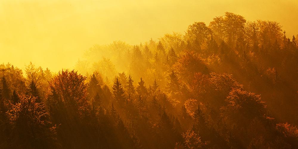 Autumn in Bohemian Switzerland