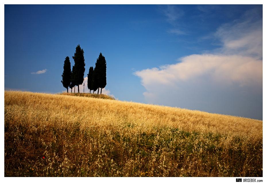 fotografie Cypress 3