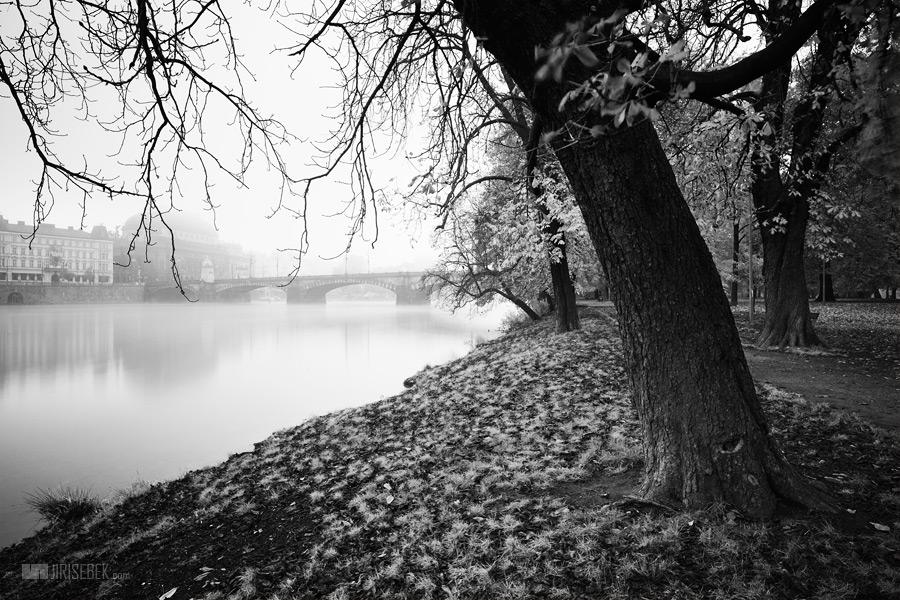 fotografie Strelecky island 3