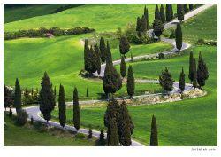 fotografie Monticchiello road