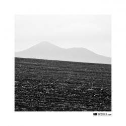 fotografie Hills