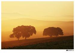 fotografie Pienza, Tuscany