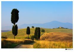 photo Terrapille in tuscany
