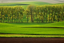 fotografie South Moravia