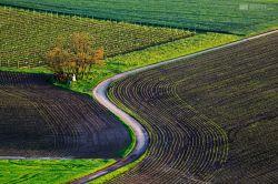 fotografie South Moravia