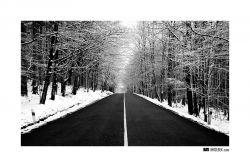 fotografie Silnice v zimě
