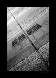 fotografie Line